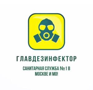уничтожение крыс в Москве и Московской области